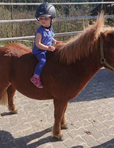 Ponyclub